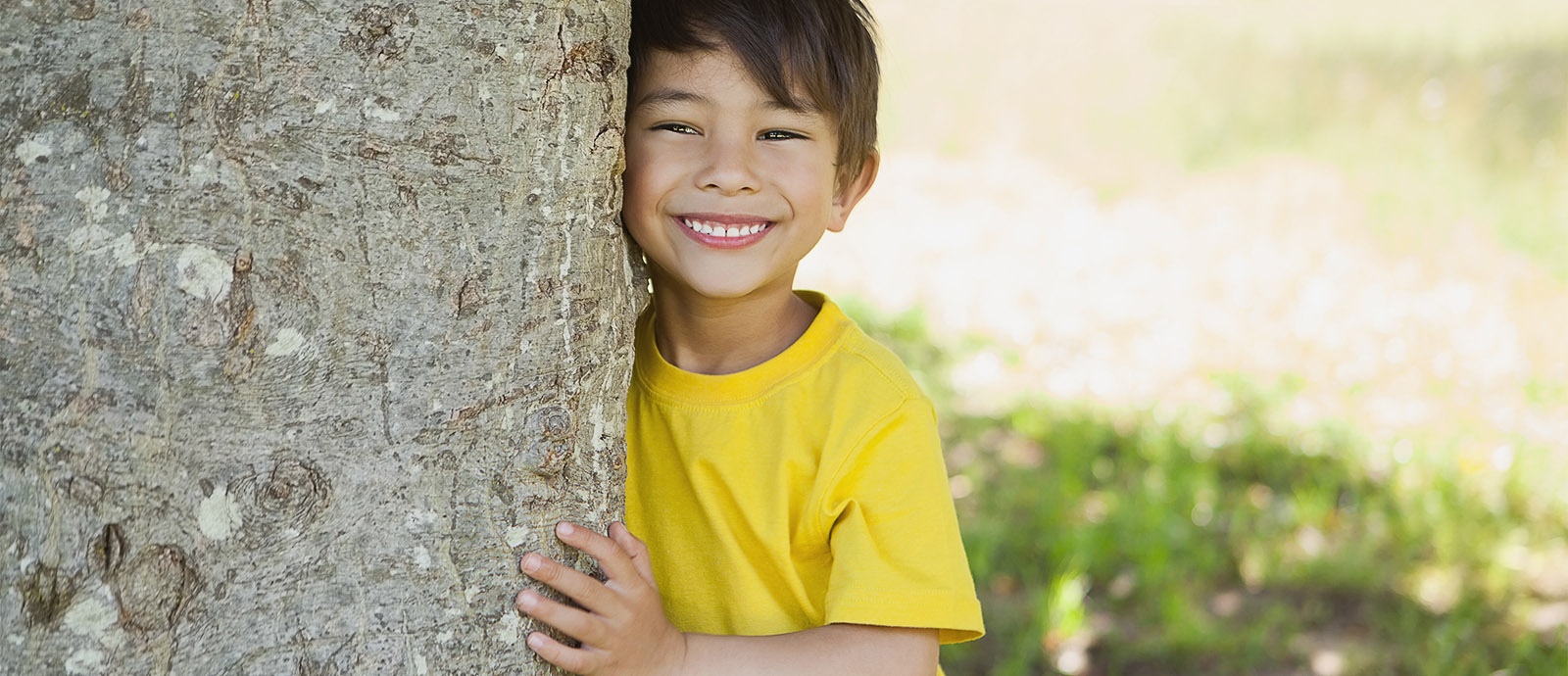 slide-smiling-boy-on-tree-2